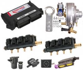 FSI STAG 400 8 DPI + Emer Palladio + AC W02 8 цил.